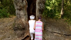 Two sisters climb in hollow of old giant oak Stock Footage