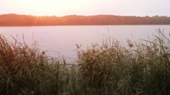 Sunset on background of quiet river Stock Footage
