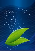 tea leaves on a blue background with water drops - stock illustration