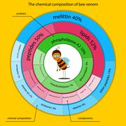 chemical properties of bee venom presented in the form of infographics - stock illustration