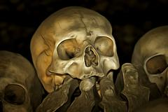 Human Skull and Bones Piirros