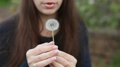 beautiful girl blows away dandelion. Park Outdoors - stock footage