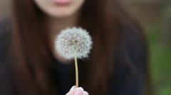 Beautiful girl blows away dandelion. Park Outdoors Stock Footage