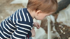 Little boy squatting. back view Stock Footage