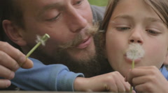 The bearded man with a child blowing on a dandelion. - stock footage