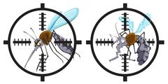 Mosquitoes being in focus - stock illustration