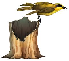 Yellow bird standing on log - stock illustration