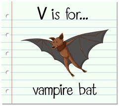 Flashcard letter V is for vampire bat Stock Illustration
