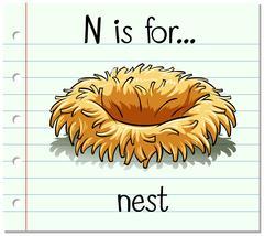 Flashcard letter N is for nest Stock Illustration