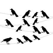a flock of crows on the wire - stock illustration