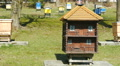 Unusual Bee hive in the shape of house HD Footage