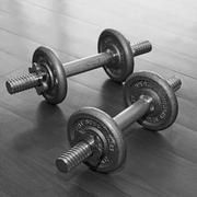 Dumbbell with plates Stock Photos