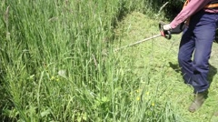 Worker cuts the grass with lawn string trimmer Stock Footage