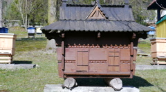 Unusual Bee hive in the shape of house Stock Footage