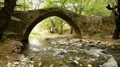 Mountain river flows under the medieval Venetian bridge in the forest Stock Footage