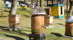 Bee garden. Old historic beehive Stock Footage