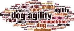 Dog agility word cloud Stock Illustration