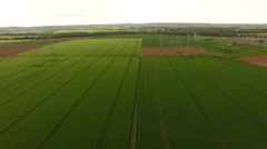 Aerial - Agricultural scenery: greenhouses and grain field Stock Footage