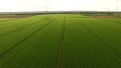 Aerial of flying over a grainfield in germany Stock Footage