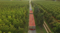 Aerial of apple bins on a  truck from rear Stock Footage