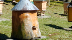 Bee garden. Old historic beehive and flying bees. Zoom in shot Stock Footage