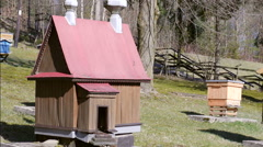 Unusual Bee hive in the shape of old wooden church Stock Footage