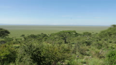 View point in Serengeti national park Tanzania Stock Footage