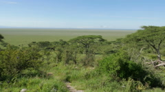 View point in Serengeti national park Tanzania - stock footage
