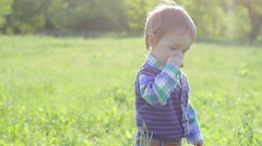 Little boy walking on the grass and picks flowers Stock Footage