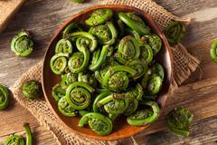 Raw Organic Green Fiddlehead Ferns Stock Photos