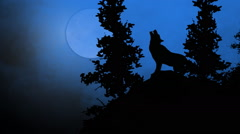 Wolf howling at the full moon Arkistovideo