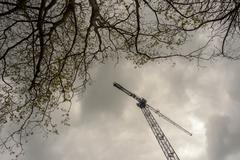 An industrial crane is dwarfed by trees growing out of the frame - stock photo