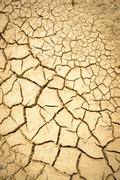 Dry mud with many cracks and fissures on the surface Stock Photos