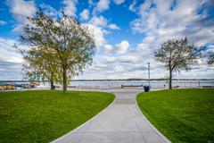 Trees along a walkway at the Harbourfront, in Toronto, Ontario. Stock Photos