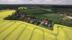 Canola Field Aerial View - stock footage