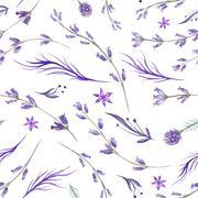 Watercolor Purple Lavender Pattern - stock illustration