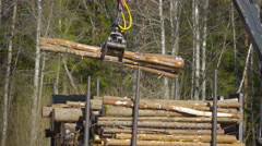 Thin tall logs being grabbed by the grapple Stock Footage