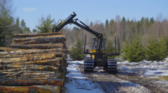 The big log grapple truck and the logs Stock Footage