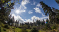 Sun and clouds timelapse wild mountain range Harz forest fisheye Footage