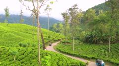 Tuk Tuks on road winding through tea estate, Highlands, Sri Lanka Stock Footage