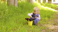 Child with yellow basket of purple tulip flowers in spring outdoors. Stock Footage