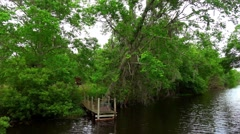 Boat tour through the swamp Stock Footage