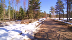 The thick snow on the ground in the forest Stock Footage