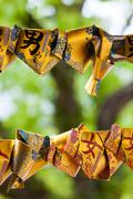Omikuji tied at a Shrine in Japan - stock photo