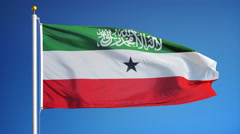 Somaliland flag in slow motion seamlessly looped with alpha Stock Footage