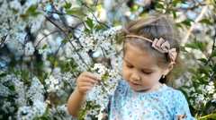 Little girl smelling the cherry flowers and smiling Stock Footage