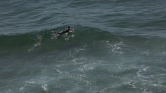 4k Surfer paddles to catch sea wave Sagres Portugal Stock Footage