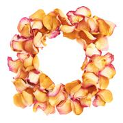 Round frame made of pink rose petals as a romantic composition over white - stock photo