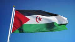 Sahrawi Arab Democratic Republic cam 004  Stock Footage