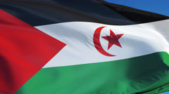 Sahrawi Arab Democratic Republic flag in slow motion seamlessly looped with alph Stock Footage